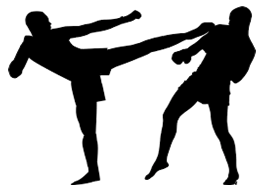 ΤΜΗΜΑ KICK BOXING